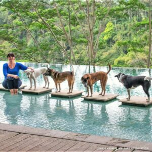 Janice-and-her-dogs3318-768x768