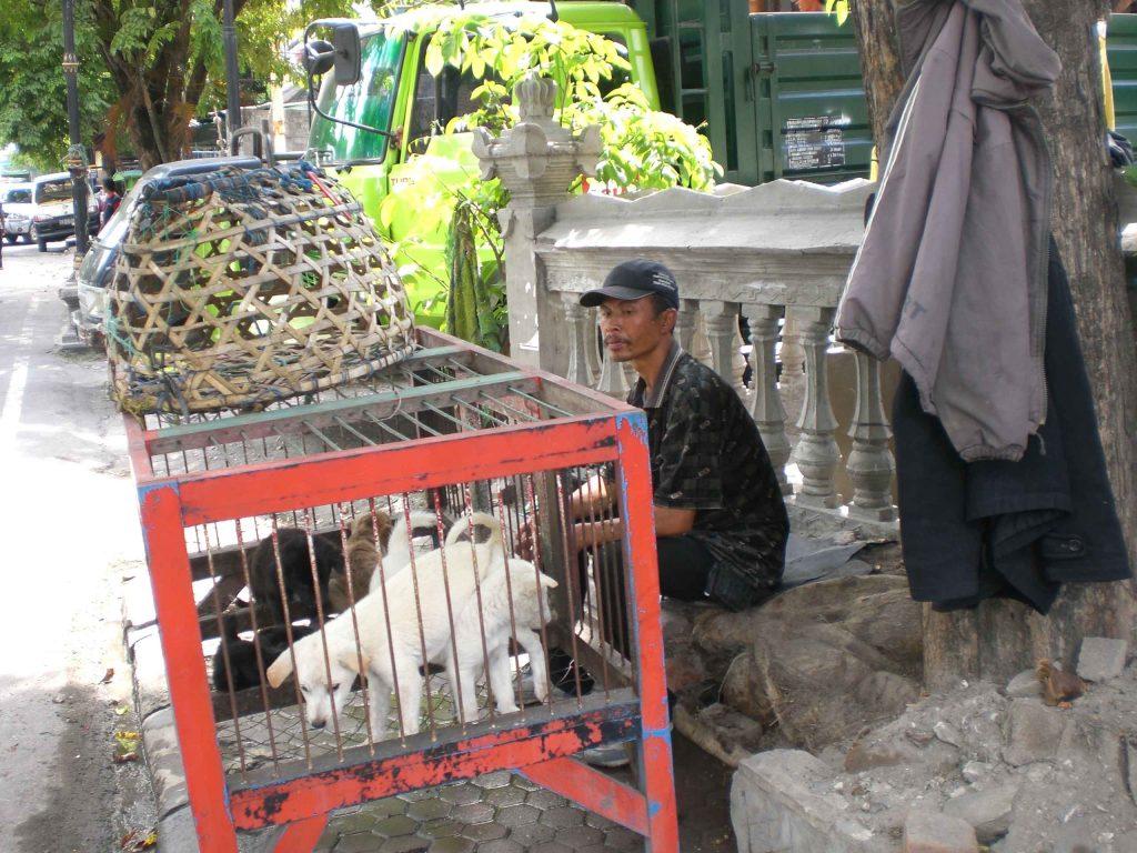 Hundhändler