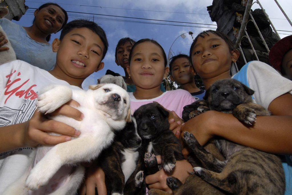 Children bring their puppies to the free clinic.